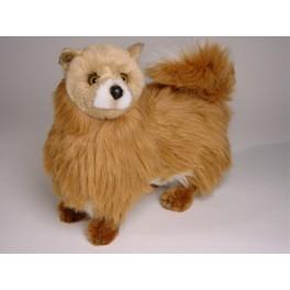 http://animalprops.com/1259-thickbox_default/foxy-pomeranian-dog-stuffed-plush-animal-display-prop.jpg