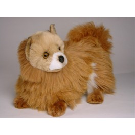 http://animalprops.com/1262-thickbox_default/kimchi-pomeranian-dog-stuffed-plush-animal-display-prop.jpg