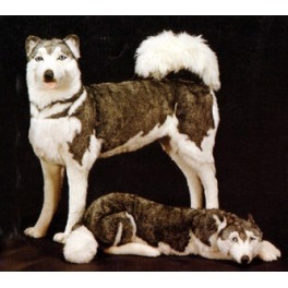 Balto Husky Dog Stuffed Plush Realistic Lifelike Lifesize Animal