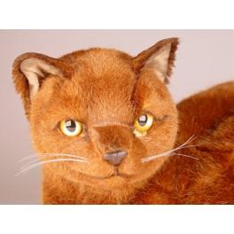 http://animalprops.com/193-thickbox_default/tarawood-burmese-cat-stuffed-plush-display-prop.jpg