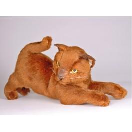 http://animalprops.com/196-thickbox_default/caramel-burmese-cat-stuffed-plush-display-prop.jpg