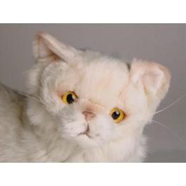 http://animalprops.com/210-thickbox_default/bond-chinchilla-golden-persian-cat-stuffed-plush-display-prop.jpg