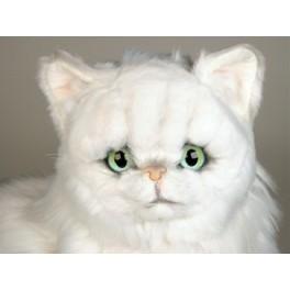 http://animalprops.com/222-thickbox_default/fancy-chinchilla-silver-persian-cat-stuffed-plush-display-prop.jpg
