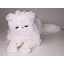 http://animalprops.com/225-thickbox_default/mr-tinkles-chinchilla-silver-white-persian-cat-stuffed-plush-display-prop.jpg