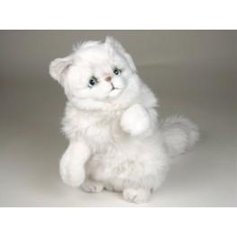 http://animalprops.com/237-thickbox_default/snowbell-chinchilla-silver-white-persian-cat-stuffed-plush-display-prop.jpg
