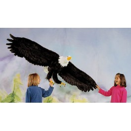 http://animalprops.com/28-thickbox_default/liberty-giant-bald-eagle-display-prop.jpg
