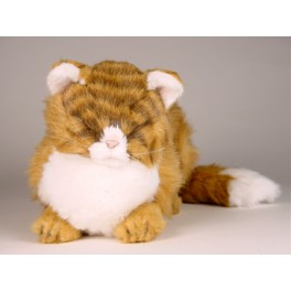 http://animalprops.com/290-thickbox_default/morris-maine-coon-cat-stuffed-plush-display-prop.jpg