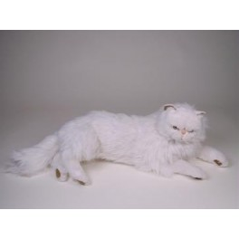 White persian cat teddy