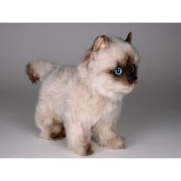 9c79834ff46d Taffy Seal Point Himalayan Cat Stuffed Plush Realistic Lifelike ...