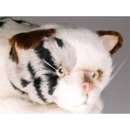 http://animalprops.com/480-thickbox_default/cammi-spotted-cat-stuffed-plush-animal-display-prop.jpg