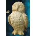 Hoodini Owl
