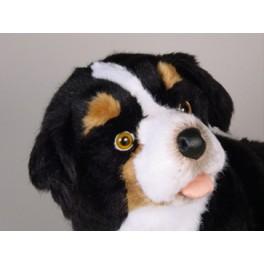 http://animalprops.com/648-thickbox_default/blass-bernese-mountain-berner-dog-stuffed-plush-animal-display-prop.jpg