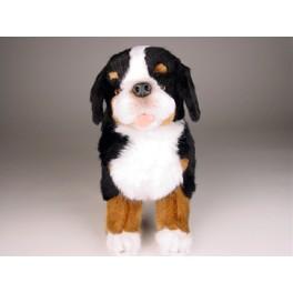 http://animalprops.com/658-thickbox_default/julia-bernese-mountain-berner-dog-stuffed-plush-animal-display-prop.jpg