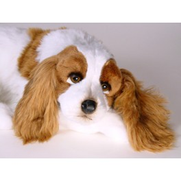 http://animalprops.com/763-thickbox_default/lady-cavalier-king-charles-spaniel-stuffed-plush-animal-display-prop.jpg