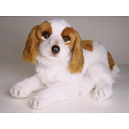http://animalprops.com/766-thickbox_default/windsor-cavalier-king-charles-spaniel-stuffed-plush-animal-display-prop.jpg