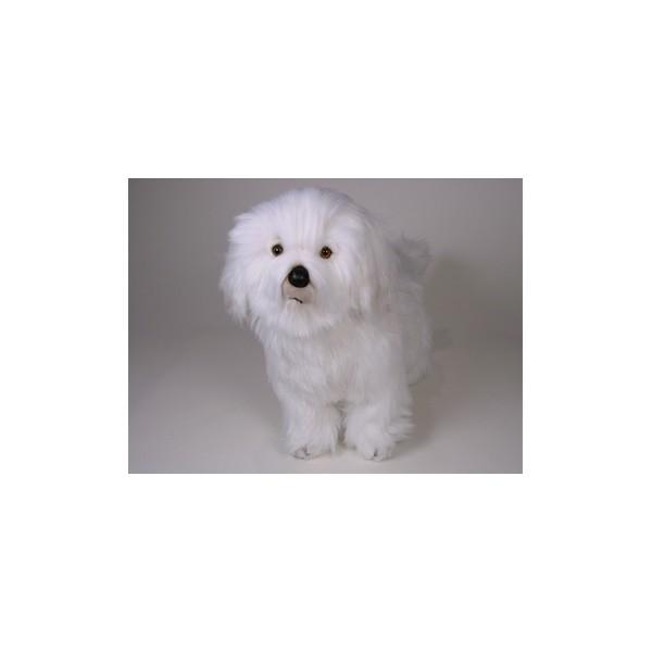 Maddie Coton De Tulear Dog Stuffed Plush Realistic Lifelike Lifesize