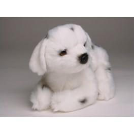 http://animalprops.com/947-thickbox_default/spot-dalmatian-dog-stuffed-plush-animal-display-prop.jpg
